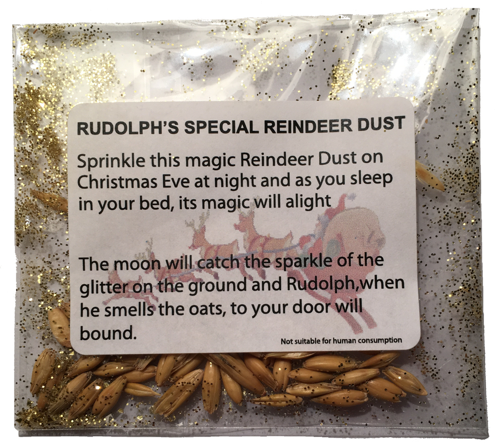 Personalised Letters From Santa With Free Magical Reindeer Dust