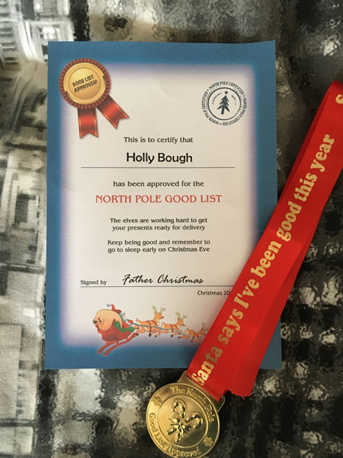 Santa North Pole Good Boy Girl List Approved Medal And Certificate