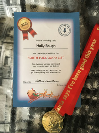 Santa North Pole Good Boy/Girl List Approved Medal and Certificate